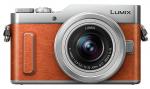 Accessoires pour Panasonic Lumix DMC-GF10
