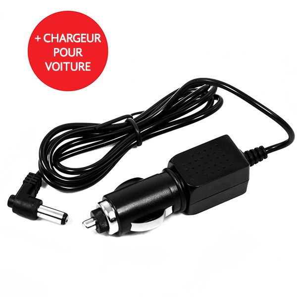 Panasonic Chargeur DE-A66 Compatible 2 en 1 Maison et Voiture